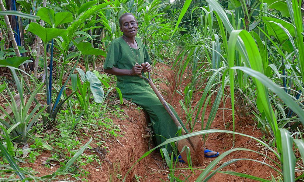 Addressing-food-insecurity-filomena-on-farm